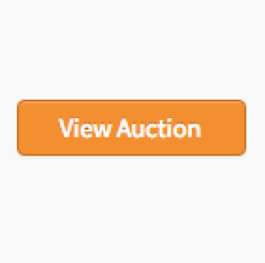Example Auction